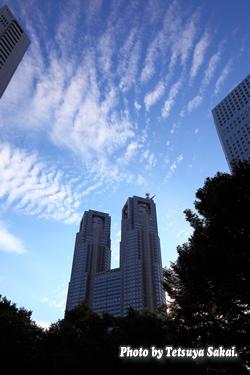 新宿都庁サバ雲
