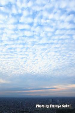 新宿都庁展望台風景サバ雲